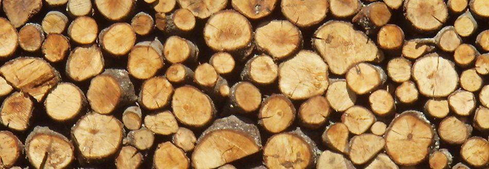 madera-biomasa
