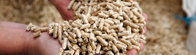 pellet de madera